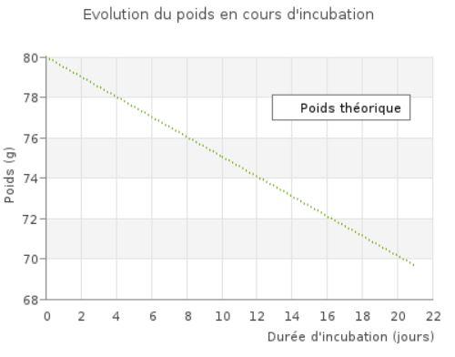 Perte de poids théorique en cours d'incubation