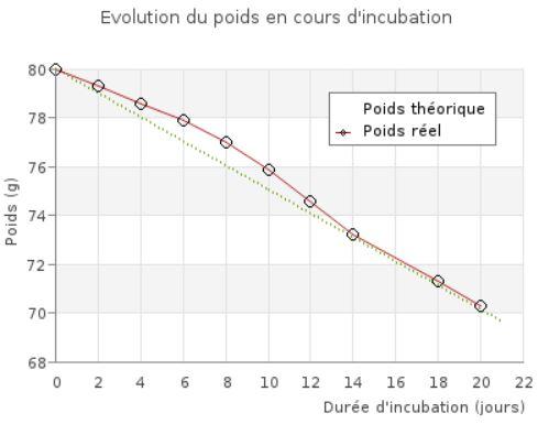 Perte de poids en cours d'incubation