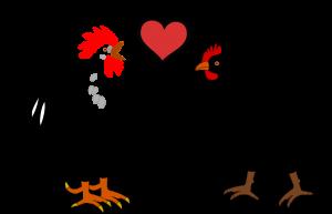 La poule aime le coq