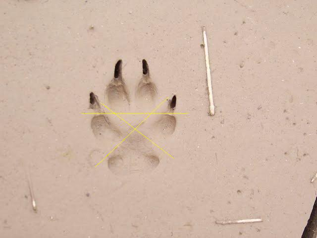 3 doigts dans le cul d039une vieille - 5 2